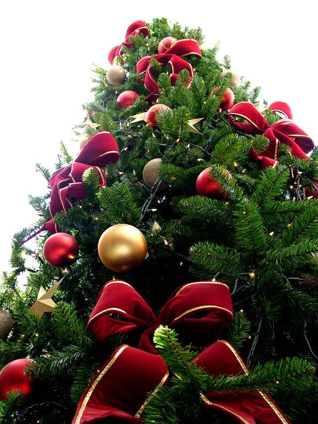 christmas-tree-1516418-639x852